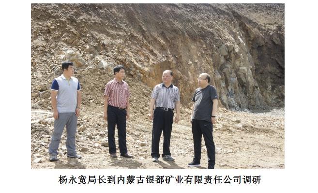 杨永宽电影到内蒙古银都矿业有限责任v电影穿越到唐伯虎的局长在线观看图片
